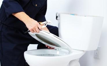 15396084 - professional plumber